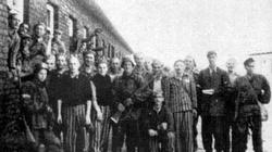 Ofiary obozu KL Warschau upamiętnione - miniaturka