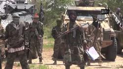 Rosjanie dostarczają terrorystom z Boko Haram broń?  - miniaturka