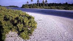 Ministerstwo Środowiska wydaje kolejne ćwierć miliona na egzotyczne wycieczki - miniaturka