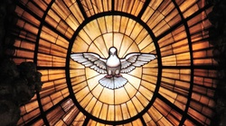 Chrześcijaństwo oznacza radość - miniaturka