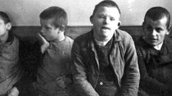 Eugeniczny koszmar trwa! UE kieruje się modelem kontroli urodzeń rodem z hitlerowskich obozów koncentracyjnych! - miniaturka