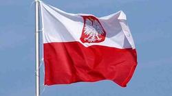 Słynny inwestor nie może się nachwalić Polski - miniaturka