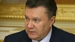 Serce Janukowycza nie wytrzymało! - miniaturka