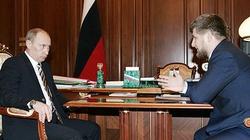 Dyktator Kadyrow chce pomóc Rosji w zwalczaniu bandytyzmu ukraińskiego! - miniaturka
