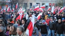 PiS-owcy na Marszu Niepodległości. Będą kary? - miniaturka