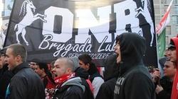 Chcą zdelegalizować Młodzieży Wszechpolskiej i ONR - miniaturka
