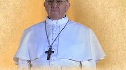 Papież Franciszek nie do zaakceptowania dla postępowej ideologii - miniaturka