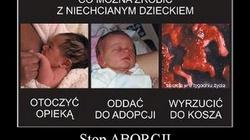 Można, można! Piękna postawa polskich położnych, które mówią publicznie NIE aborcji! - miniaturka