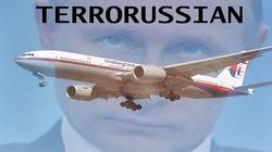 Szokujący wywiad: Putin wydał rozkaz zestrzelenia samolotu. Chciał również zestrzelić polski samolot - miniaturka