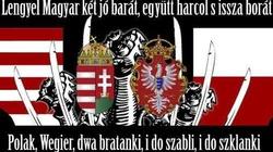 Dr Targalski dla Frondy: Polacy bronią własnej racji stanu, a Niemcy bronią własnej - miniaturka