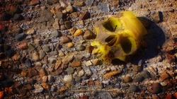 O gliwickich zmarłych z odciętymi głowami - miniaturka