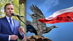 Andrzej Duda stawia na siłę prawa, nie prawo siły! - miniaturka