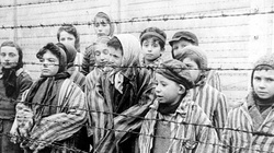 Dziś 70. rocznicy wyzwolenia obozu Auschwitz! - miniaturka
