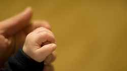Martwy noworodek znaleziony w krzakach. Dziecko uduszono - miniaturka