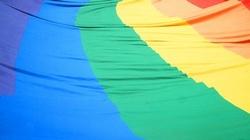 Tryumf wrogów homofaszyzmu w USA! - miniaturka