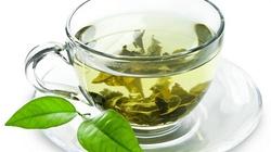 Chcesz być mądry pij zieloną herbatę! - miniaturka
