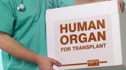 Transplantologia zabija! - miniaturka