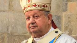 """Kard. Stanisław Dziwisz: """"Przepraszamy za grzech kłótni i podziałów"""" - miniaturka"""
