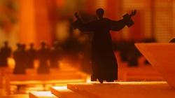 Babiarz dla Fronda.pl: Zbitka ksiądz-pedofil ma wbić klin pomiędzy katolików i księży - miniaturka
