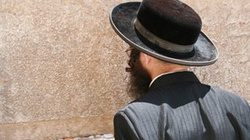 Żydzi wbrew prawu dokonują uboju rytualnego? - miniaturka