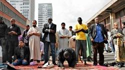 Chrońmy biednych islamistów - miniaturka