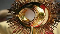 Całodobowa adoracja w warszawskich parafiach. W intencji obrony życia - miniaturka