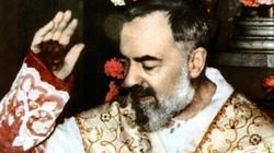 50 lat temu Chrystus wezwał do siebie Ojca Pio - miniaturka