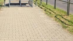 Pomorska poseł PO i ołtarz na drodze rowerowej. Twitter rozgrzany - miniaturka