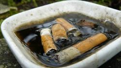 """WSTRZĄSAJĄCY raport WHO! """"Tytoniowa epidemia"""" zabija co sześć sekund - miniaturka"""