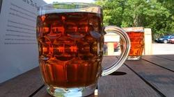 Piwo poprawia inteligencję? - miniaturka