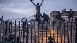 Bunt imigrantów! Zaatakowali i poranili policjantów - miniaturka
