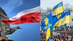 Jarosław Sellin dla Fronda.pl: Ukraina musi być niepodległa. Taki jest polski interes narodowy - miniaturka