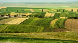 Coraz więcej cudzoziemców wykupuje polską ziemię - miniaturka