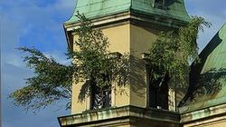 """Anna Sobecka chce odwołania dyrektora CSW. Za """"chęć poniżania katolickiego Narodu"""" - miniaturka"""