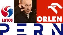 Rosjanie coraz słabsi w gdańskim Naftoporcie! - miniaturka