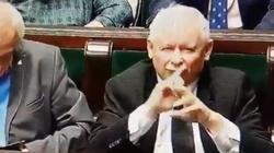 Prezes PiS 'uciszył' posłankę. Siarkowska: To było niepotrzebne, ale prezes zawsze jest czarujący - miniaturka