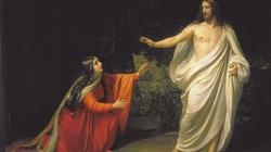 o. Piórkowski SJ: Dzisiejsze święto to wielki ukłon wobec kobiet w Kościele - miniaturka