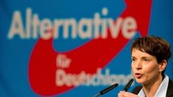 Heska rewolucja. Alternatywa dla Niemiec trzecią siłą w kraju związkowym - miniaturka