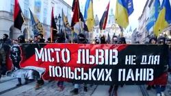 Marsz nacjonalistów we Lwowie: Po co?! - miniaturka