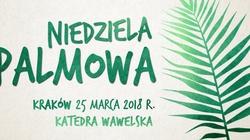Abp Jędraszewski zaprasza na niedzielę palmową i ŚDM - miniaturka