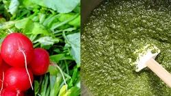 Pesto z liści rzodkiewki - witaminowa bomba - miniaturka