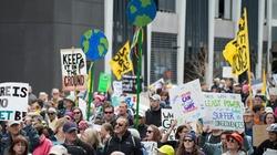 Czy ruchy ekologiczne muszą być lewackie? - miniaturka