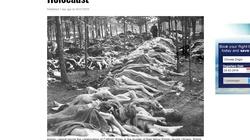 Skandal!!! Żydzi znów manipulują i opluwają Polaków!!!  - miniaturka