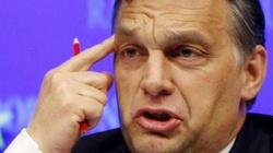 Węgry o wpuszczaniu imigrantów MÓWIĄ WPROST: Głupota - miniaturka