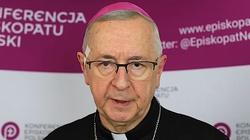 Abp Stanisław Gądecki mówi o... ,,nawróceniu ekologicznym'' - miniaturka