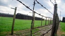 Zatrzymano Ukraińca: Robił sobie w Polsce nazistowskie zdjęcia - miniaturka