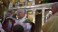 'Dziś dzień naszych świętych Matek: Maryi-Królowej Polski i Matki-Ojczyzny' - miniaturka