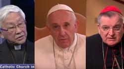 Ważny głos z Chin: Kardynał popiera prośbę do papieża o jasne nauczanie - miniaturka