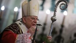 Abp Marek Jędraszewski: ZAKOCHAJCIE SIĘ w prawdziwej wolności, którą daje Jezus - miniaturka