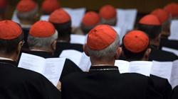 Przed synodem: 11 kardynałów przeciwko herezji! - miniaturka